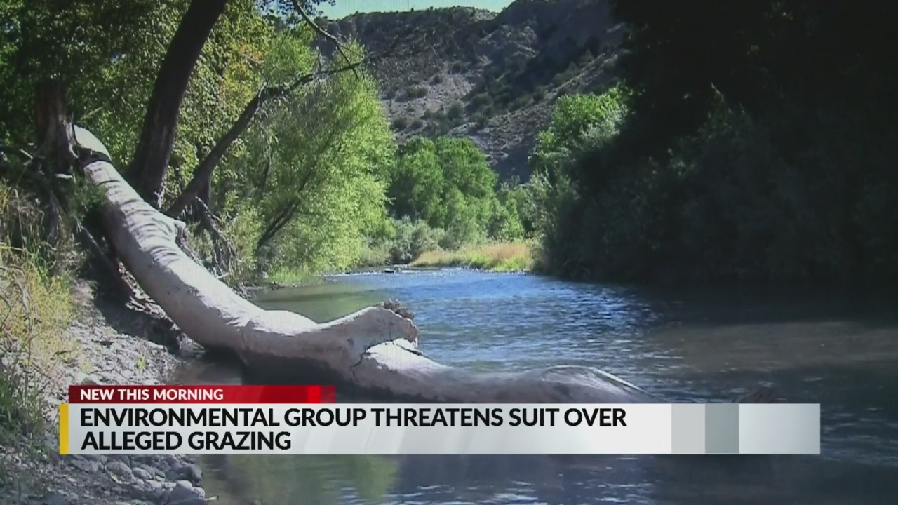Environmental group threatens to sue over alleged grazing | KRQE News 13