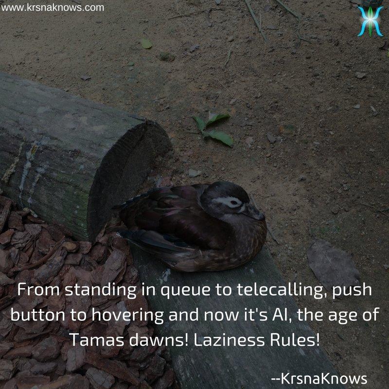 Laziness Rules