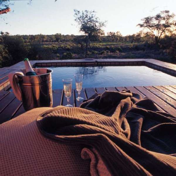 Simbambili Game Lodge Plunge Pool