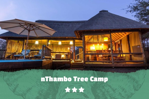 Kruger featured image nThambo Tree Camp
