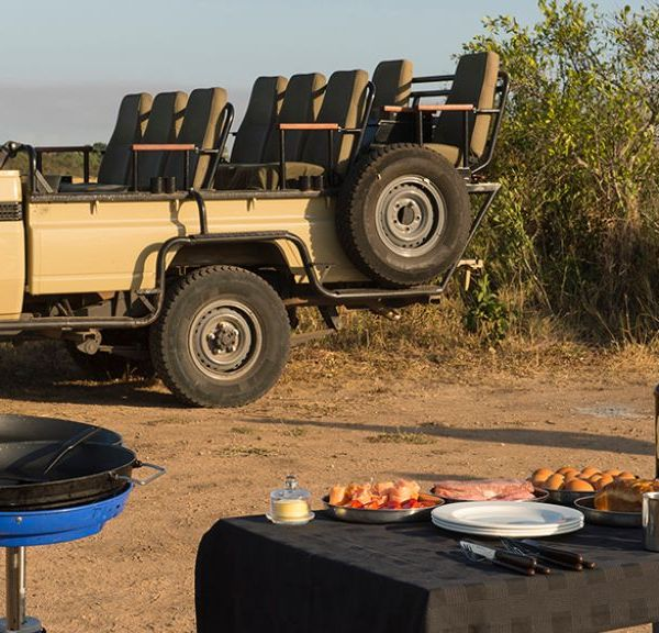 Tintswalo Manor House Game Drives