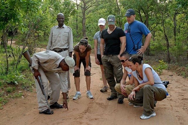 Manyatta Rock Camp Walking Bush Safari