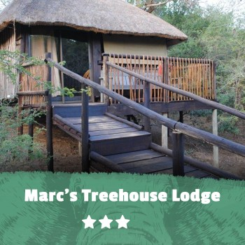Kruger featured image Marc's Treehouse Lodge