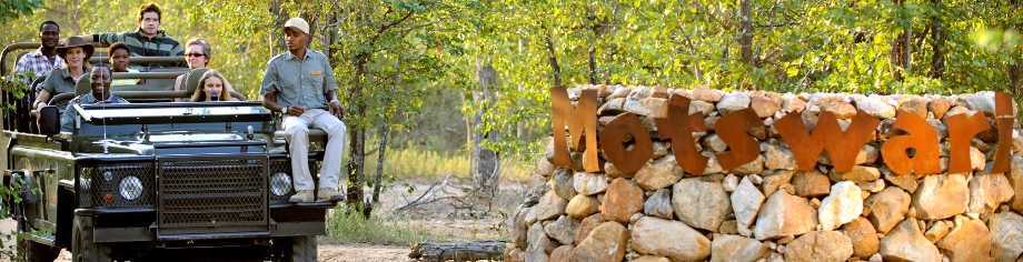 Motswari Private Game Reserve Feature