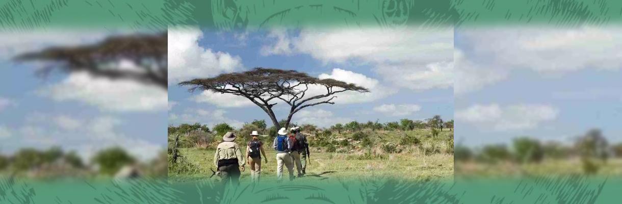 Shumbalala Game Lodge Walking Safaris