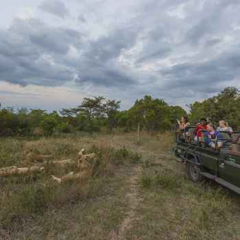 Thornybush Game Lodge Game Route