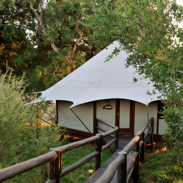 Hamiltons Tented Camp Outside of Room
