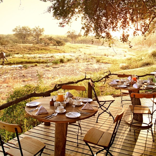 Motswari Private Game Reserve Early Morning View of the Deck Dining Area Prepared for Breakfast