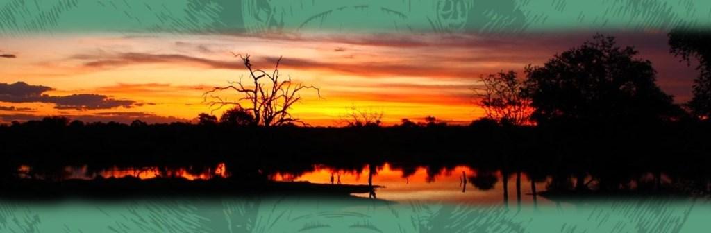 Motswari Private Game Reserve Sunset River View