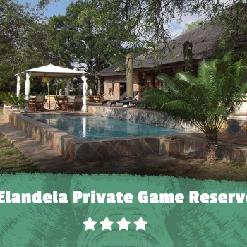 Kruger featured image Elandela Private Game Reserve