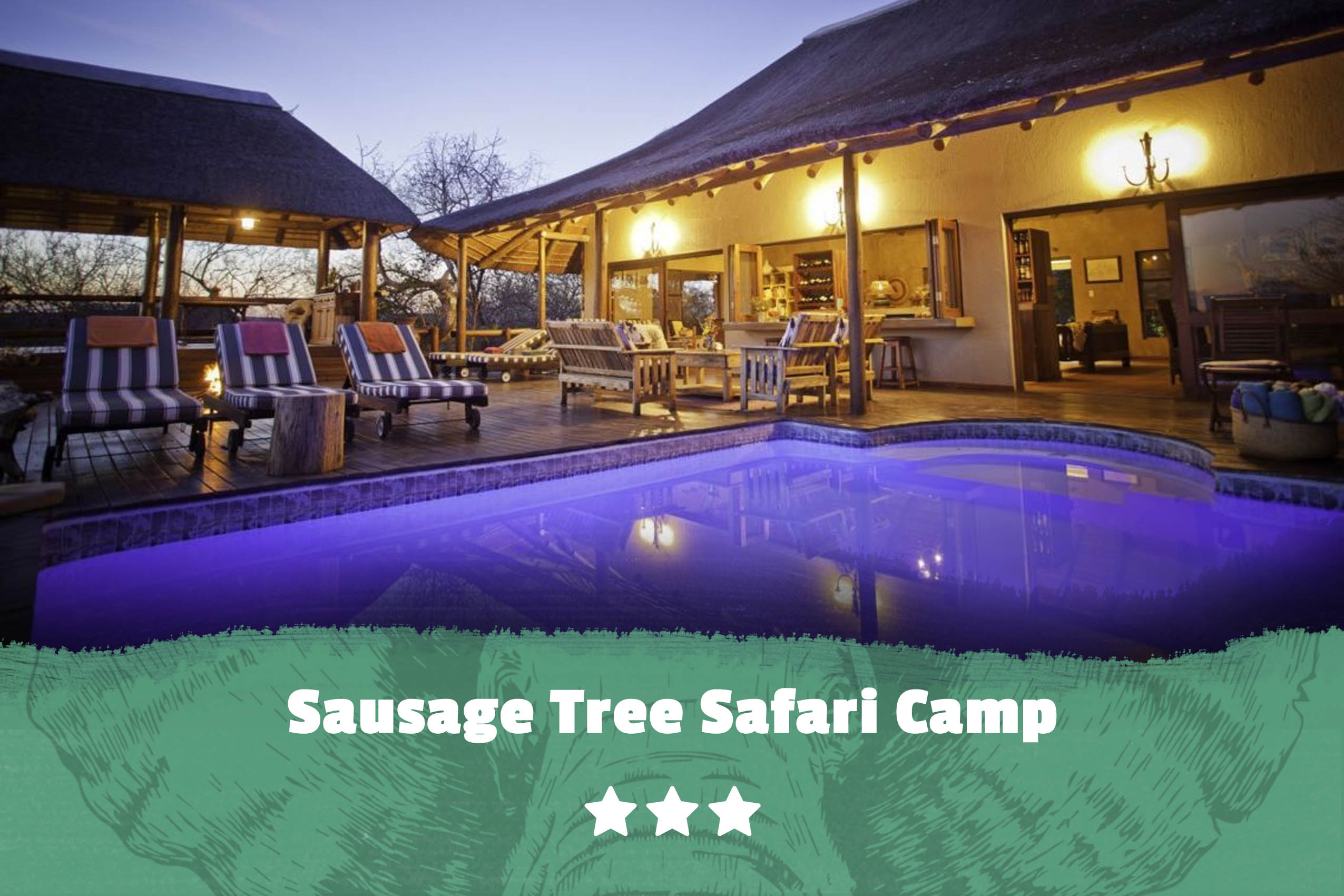 Kruger featured image Sausage Tree Safari Camp