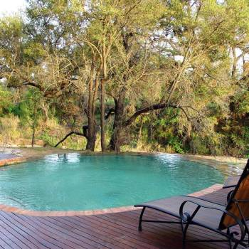 Hoyo Hoyo Safari Lodge Poolside Overview