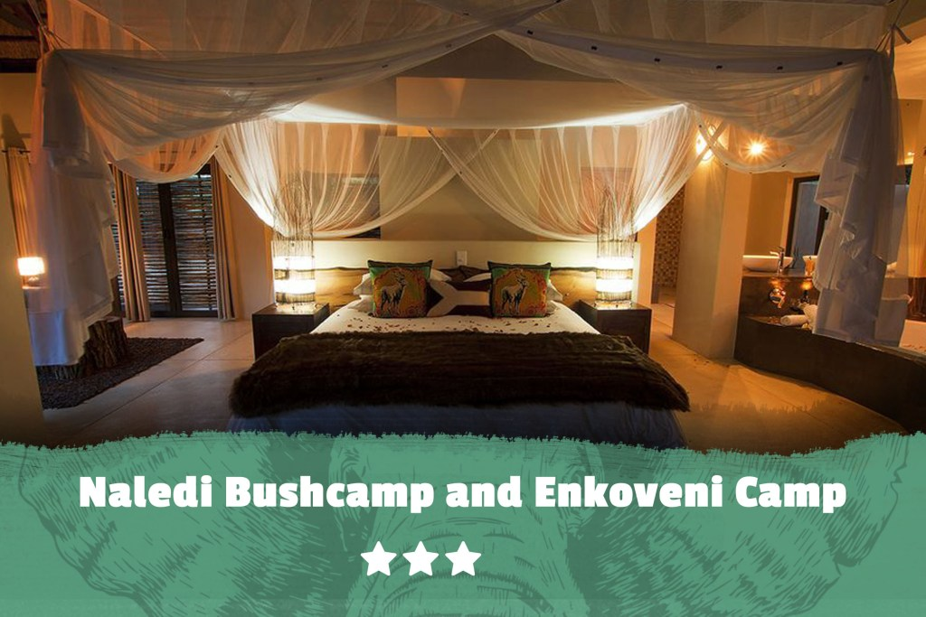 Kruger featured image Naledi Bushcamp and Enkoveni Camp