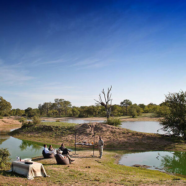 Kruger featured image Timbavati Private Game Reserve