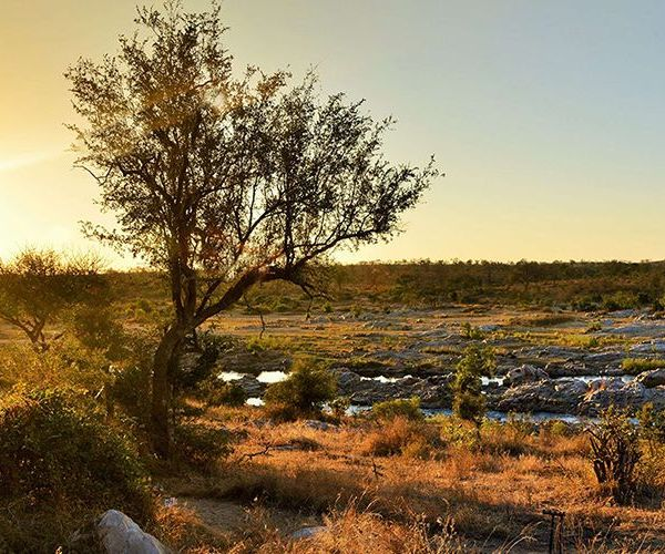 Mjejane River Lodge Scenery
