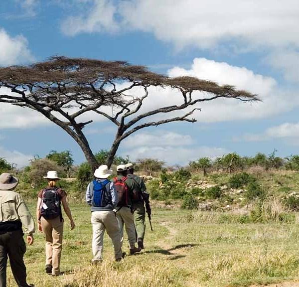 Serondella Game Lodge Walking Safari