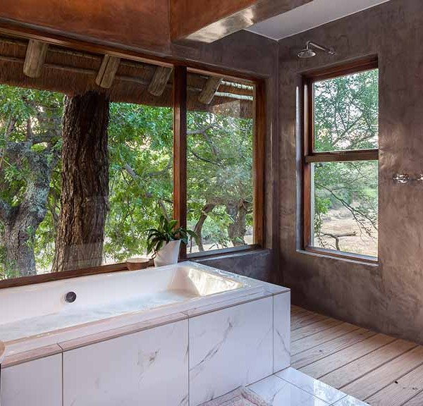 Thornybush Game Lodge Accommodation Bathroom