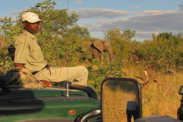 Ezulwini Resorts Game Drive Safari