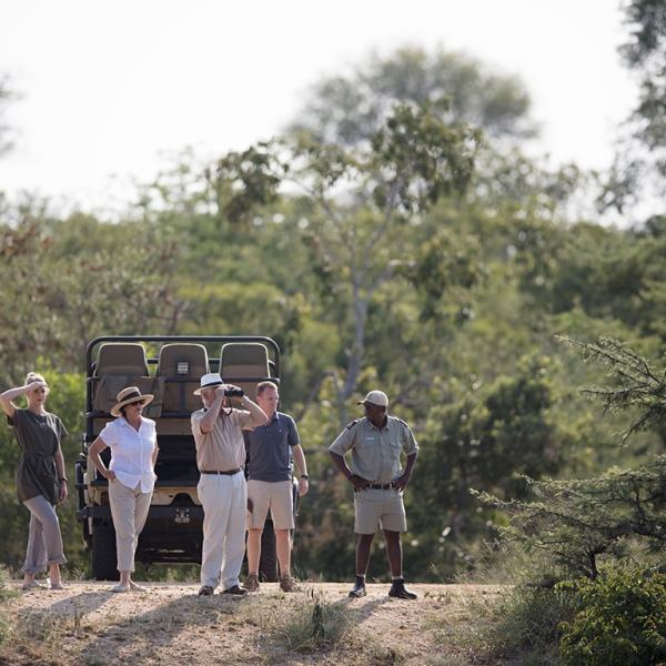 Kapama Karula Game Drive Safari
