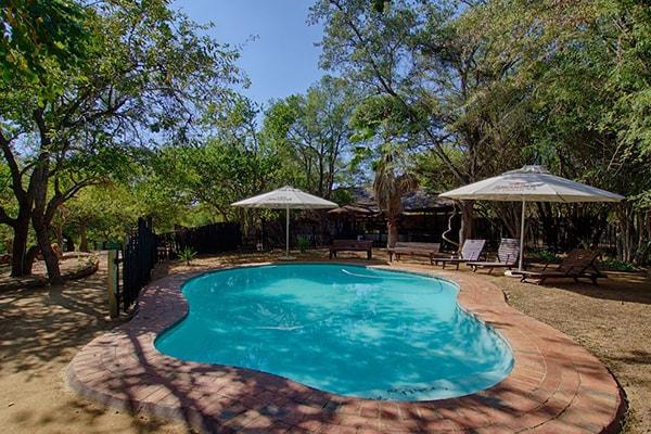Marc's Treehouse Lodge Pool
