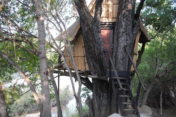 Marc's Treehouse Lodge Treehouse Accommodation