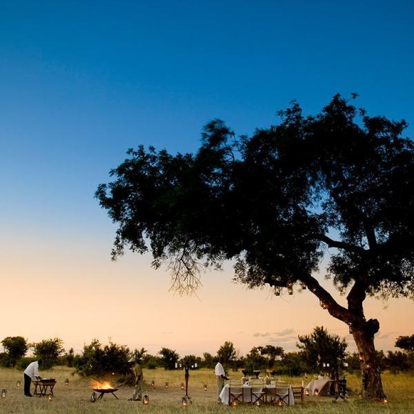 Ngala Safari Lodge Bush Dining