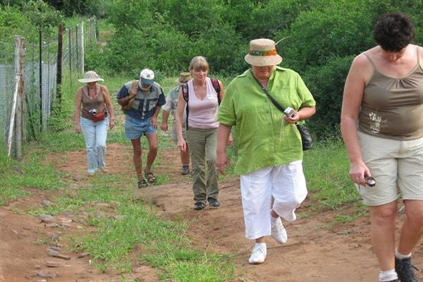 Pafuri River Camp Hiking