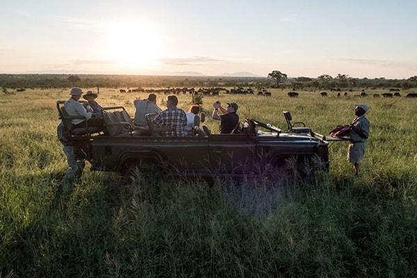 Pungwe Bush Camp Game Drive Safari