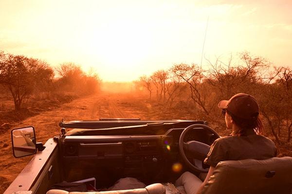 Tremisana Game Lodge Game Drive Safari