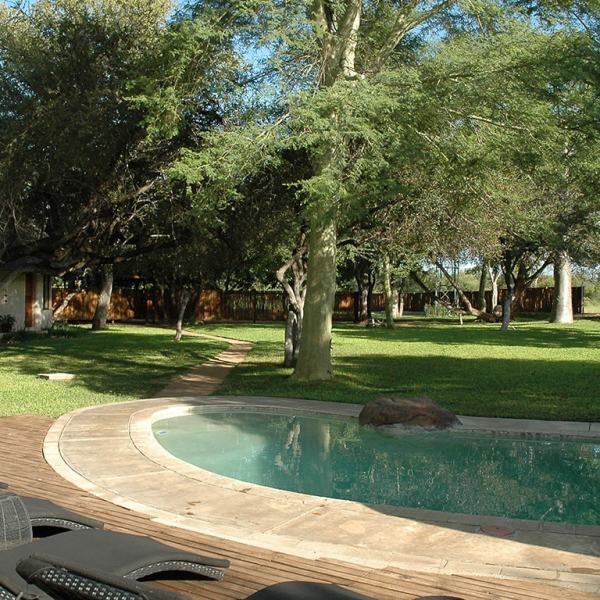 nDzuti Safari Camp Pool