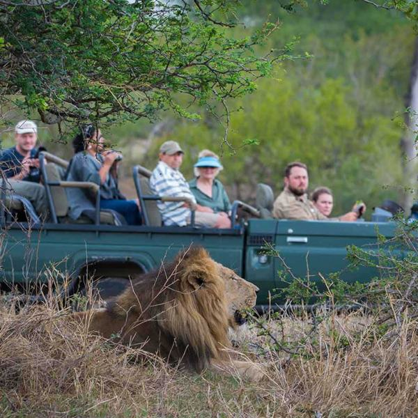 nThambo Tree Camp Game Drive Safari