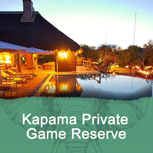 Kapama Private Game Reserve Feature Image New