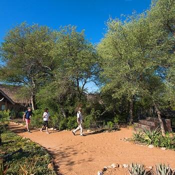 Kambaku Safari Lodge Main Entrance