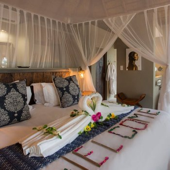 Naledi Bushcamp and Enkoveni Camp Rockfig Suite