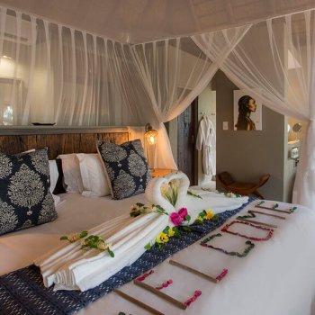 Naledi Bushcamp and Enkoveni Camp Rockfig Suite