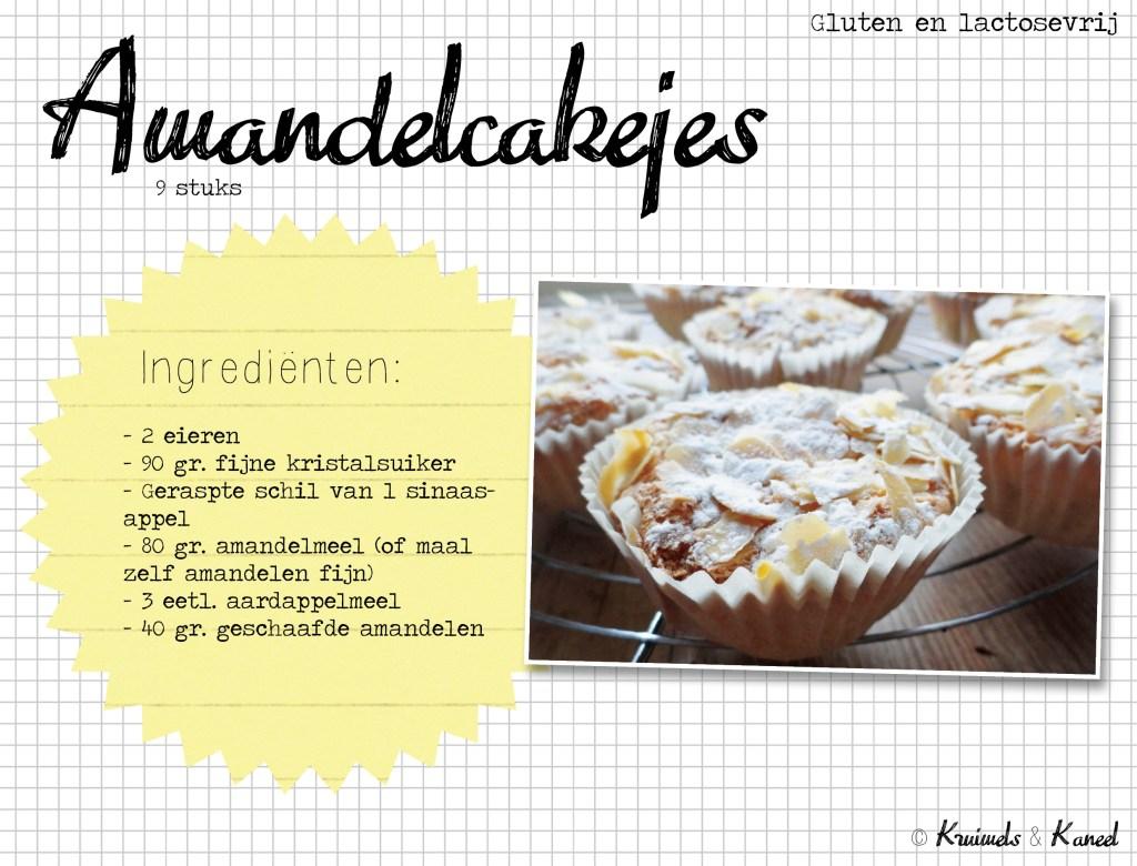 amandelcakejes-gluten-en-lactosevrij