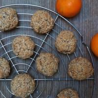 Kokosbollen met speculaas en mandarijn