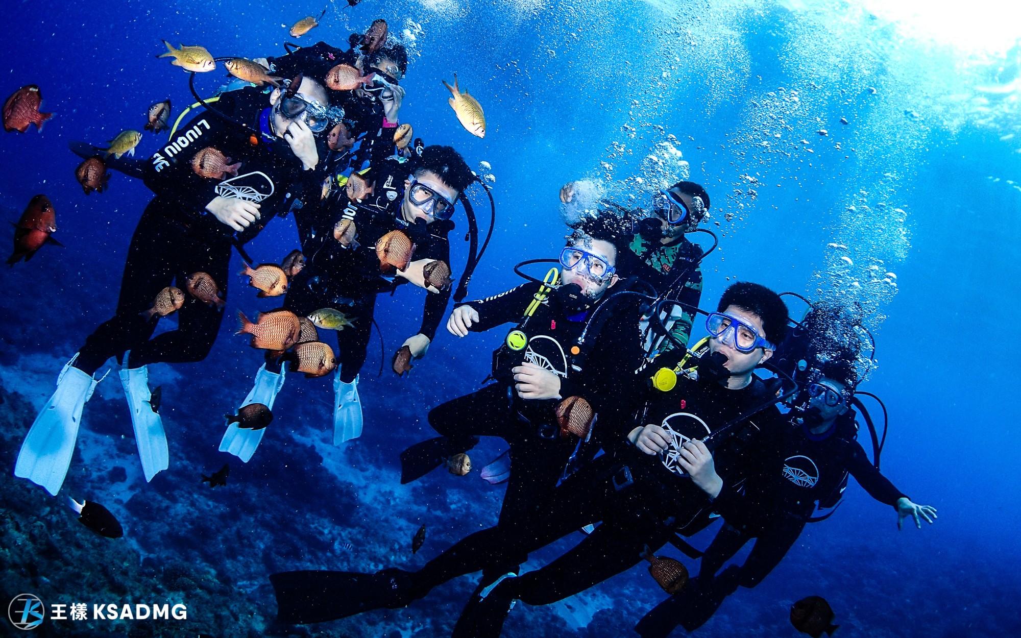 小琉球秘境潛水海龜伴游