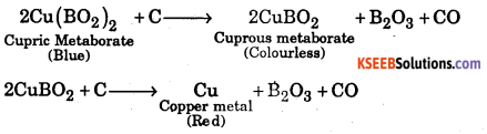 1st PUC Chemistry Question Bank Chapter 11 The P-Block Elements - 30