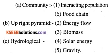 2nd PUC Biology Question Bank Chapter 14 Ecosystem 13