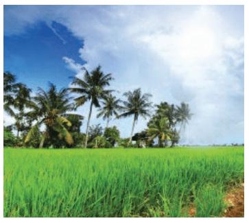 Besige Summary in Kannada 5