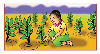 Mangala Grahadalli Putti Summary in Kannada 9