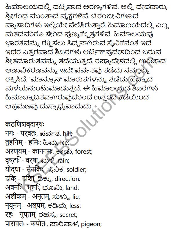 नगाधिराजः Summary in Kannada 2