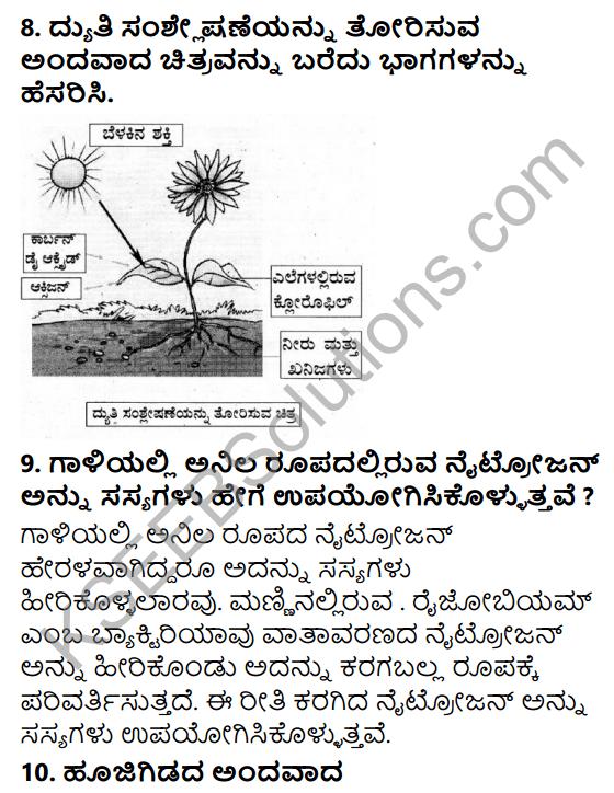 KSEEB Solutions for Class 7 Science Chapter 1 Sasyagalalli Poshane 10