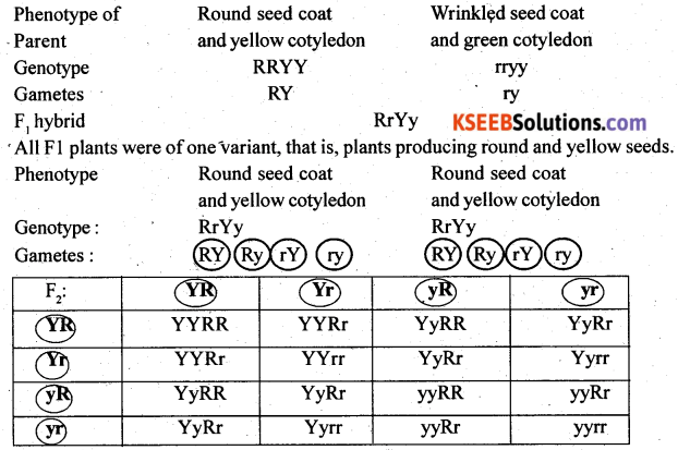 2nd PUC Biology Previous Year Question Paper June 2017 Q28