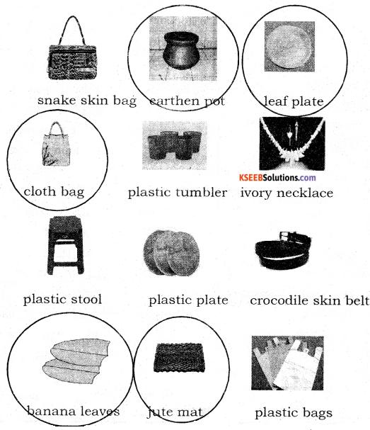 Avoid Plastics Summary In English 2
