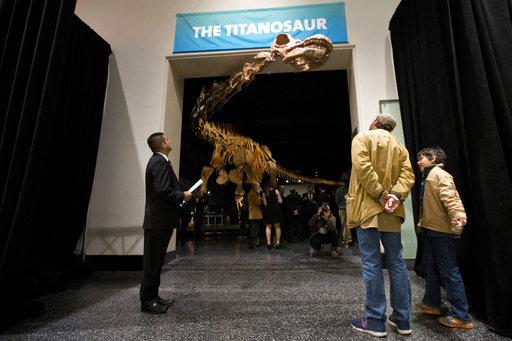 Biggest Dinosaur_428734