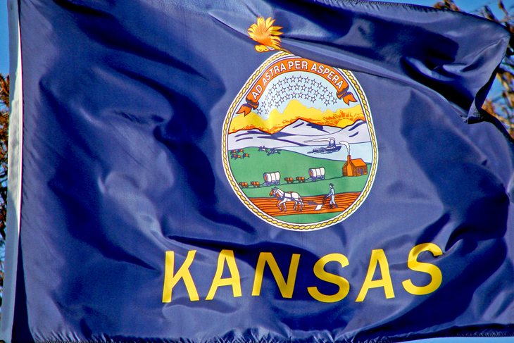 Kansas Flag Waving_1554660884612.jpg.jpg