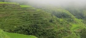 Banaue's terrassen