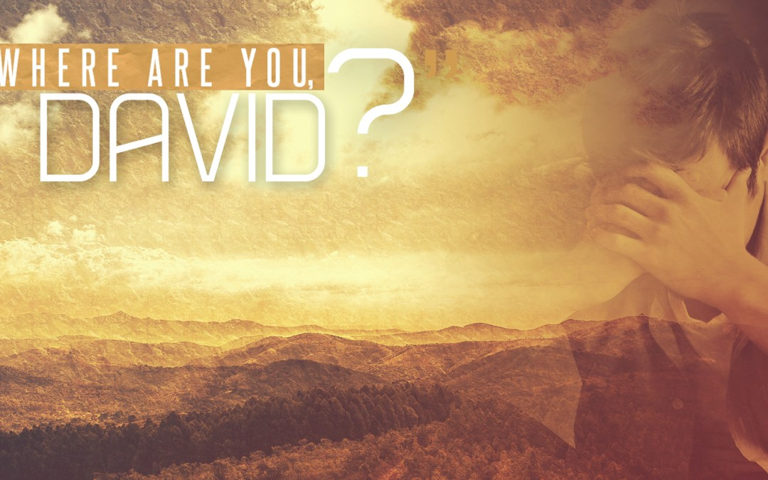 Where are you, David?